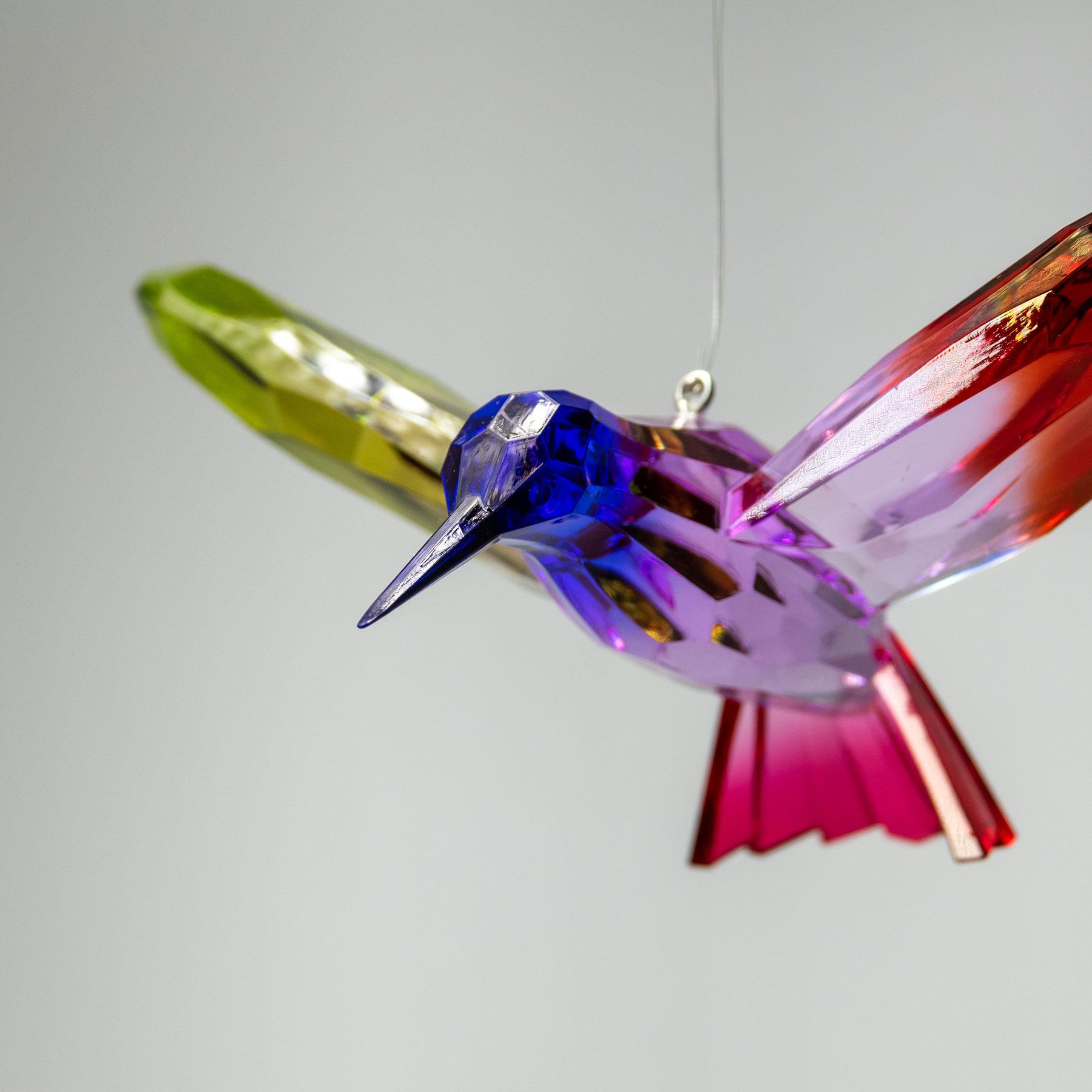 Rainbow-Hummingbirds_02-lr